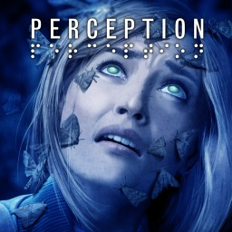 Perception (EU)