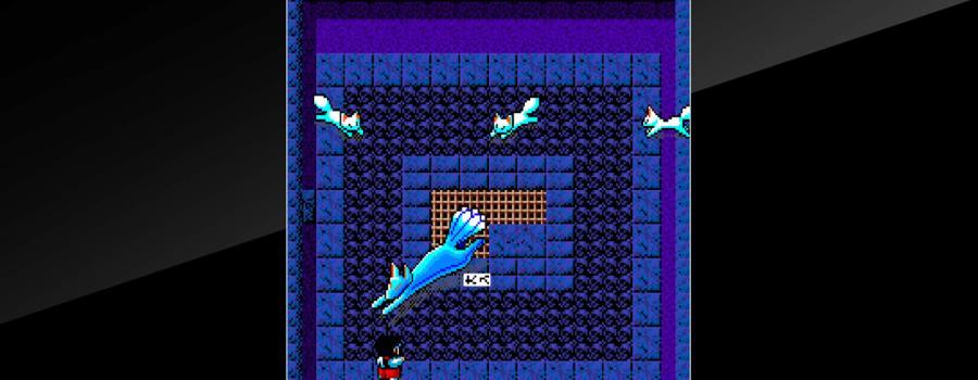 Arcade Archives: Kiki Kaikai