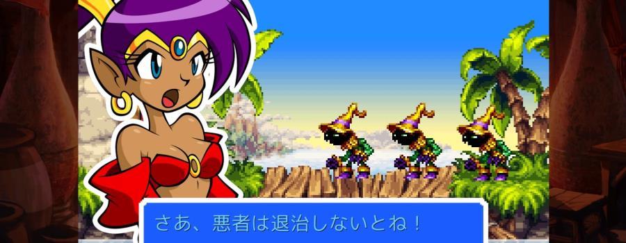 Shantae: Risky's Revenge - Director's Cut (JP)