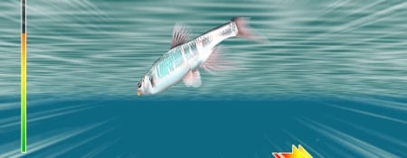 Reel Fishing: Master's Challenge
