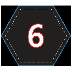 Six Single Player Trophies