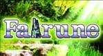 Fairune (EU) (Vita)