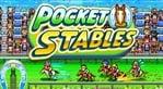 Pocket Stables