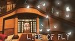Life of Fly (EU)